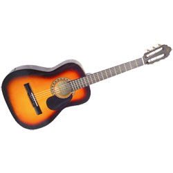 GUITARE FOLK ACOUSTIQUE